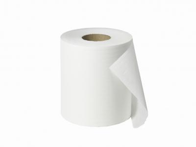 Handtuchinnenabzugsrolle Papier, 2-lagig, Ecoqualität